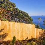 Fences in Doubtless Bay
