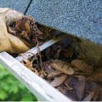 Gutter Cleaning Doubtless Bay